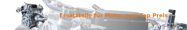 Ersatzteile für Automotor günstig kaufen   MKS Autoteile